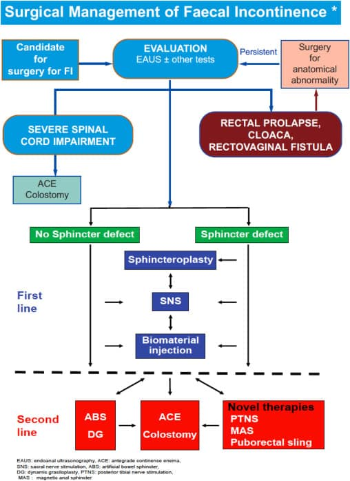 management-of-fecal-incontinence